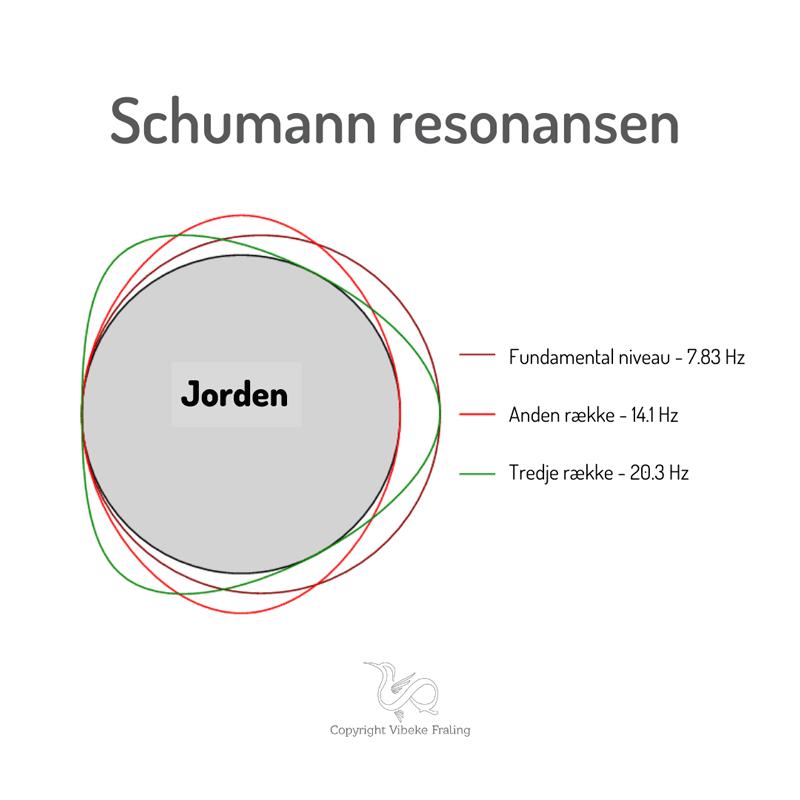 Hjerneboelger-Schumann-bevidsthed