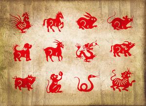 Hundens-år-chinese-zodiac